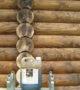 Pine Tar lazure on the log